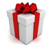 Cadeau newsletter Vivez-bloguez